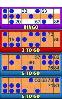 jackpot liner 90 ball bingo card examples